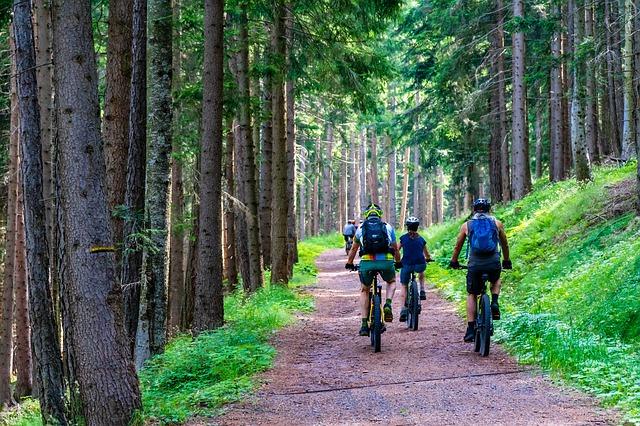 skupina lidí na cyklovýletu na horském kole.jpg